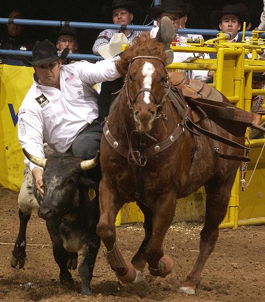 Dayton OH World's Toughest Rodeo