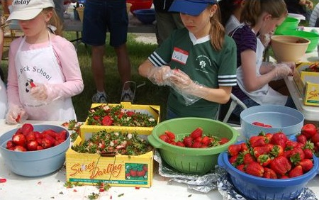 Troy Strawberry Festival