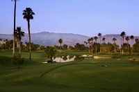 Golfing in South Palm Springs