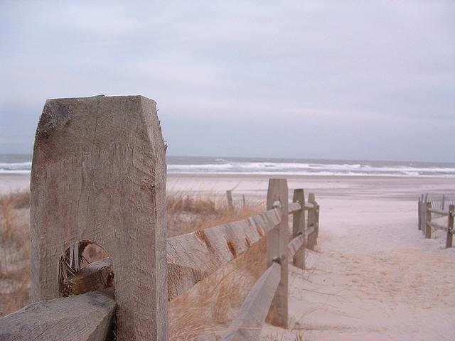 Harvey Cedars Beach