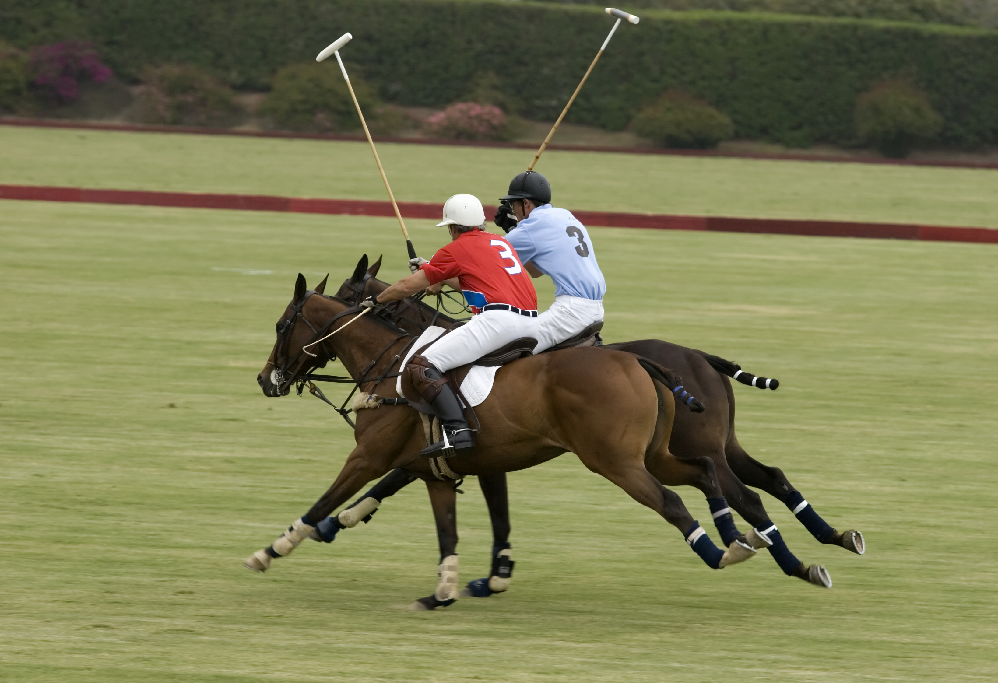 People in The Dalles love playing Polo