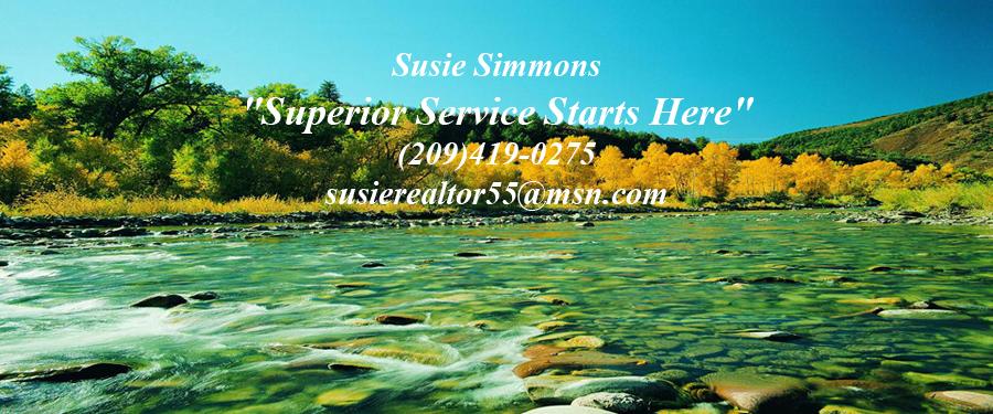 Susie Simmons header image.jpg