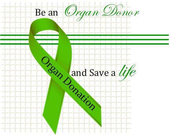 OrganDonorRibbon.jpg