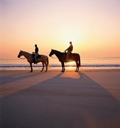 Horseback riding on Summer Beach