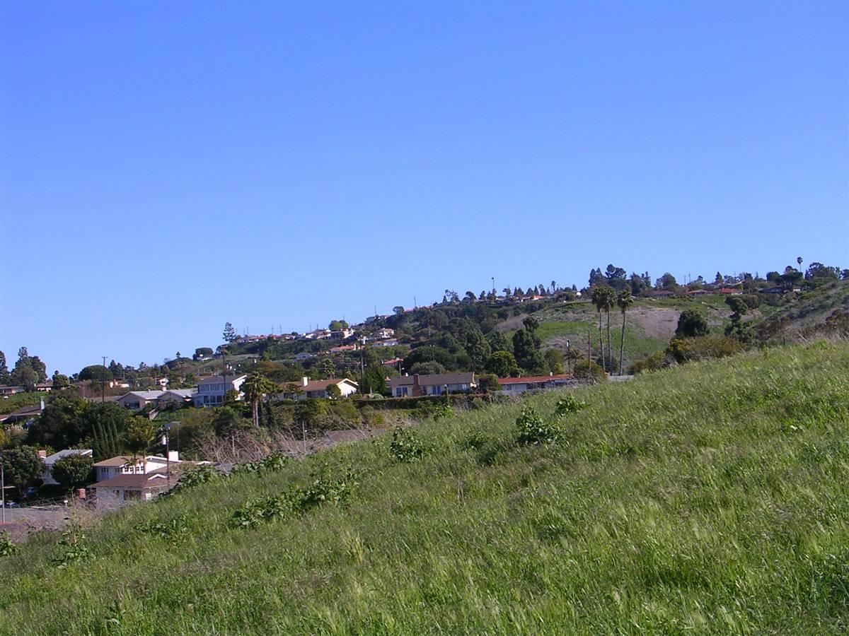 Silver Spur Hillside Homes