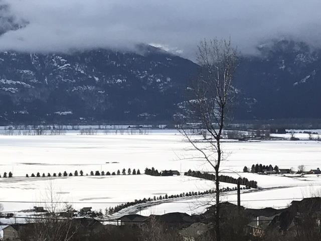 image of a hillside shot of the Creston Valley in winter