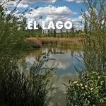 ELLAGO| Jimatthetop | Jim Pedicord | RE/MAX Top Realty Houston