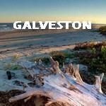 GALVESTON Land For Sale | Jimatthetop | Jim Pedicord | RE/MAX Top Realty Houston
