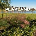 PEARLAND| Jimatthetop | Jim Pedicord | RE/MAX Top Realty Houston