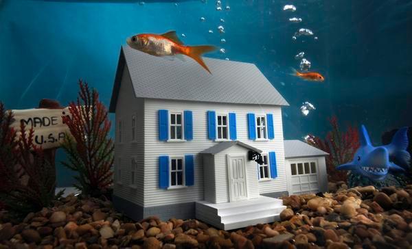 Underwater Home | Jimatthetop | Jim Pedicord | RE/MAX Top Realty Houston