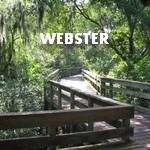 WEBSTER Land For Sale | Jimatthetop | Jim Pedicord | RE/MAX Top Realty Houston