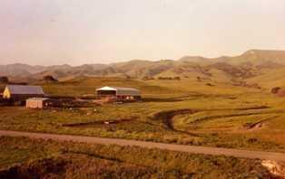 Steven Spreafico family cattle ranch in San Luis Obispo, Central CA.