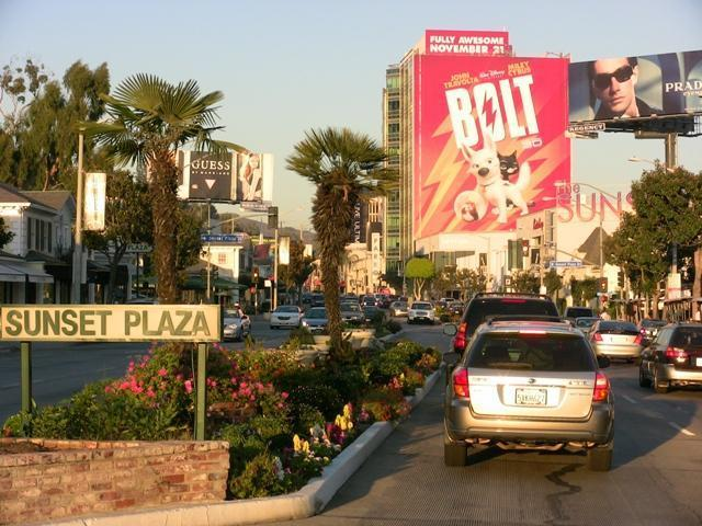 Sunset Plaza where all the movie stars hangout!