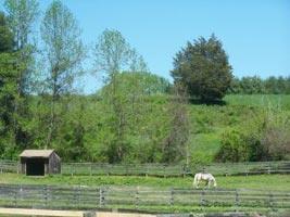 Harford-Equestrian-Center.jpg
