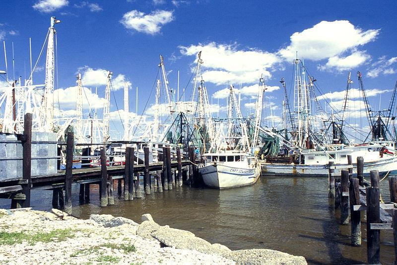 Fishing opportunities near real estate for sale Ocean Springs, MS