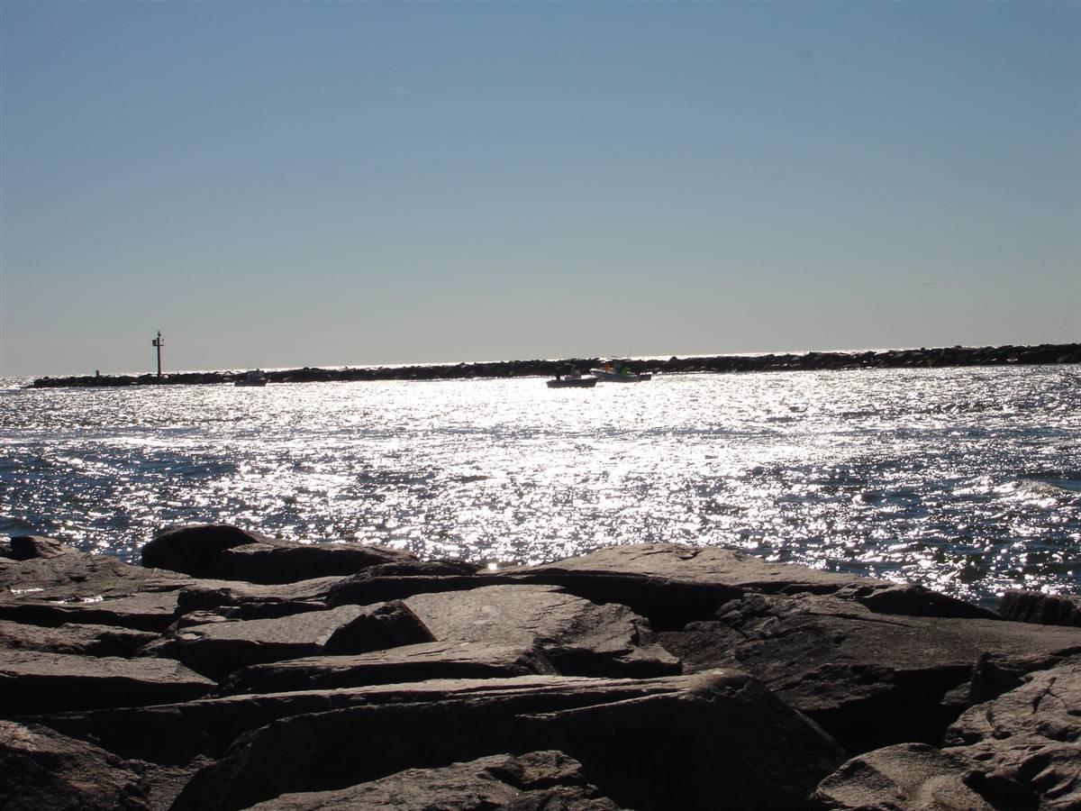 Shore-Info-Image-1.jpg