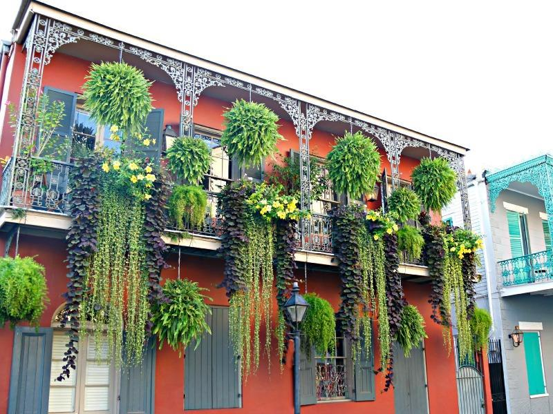BalconyFrenchQuarterPlantsGalore.jpg