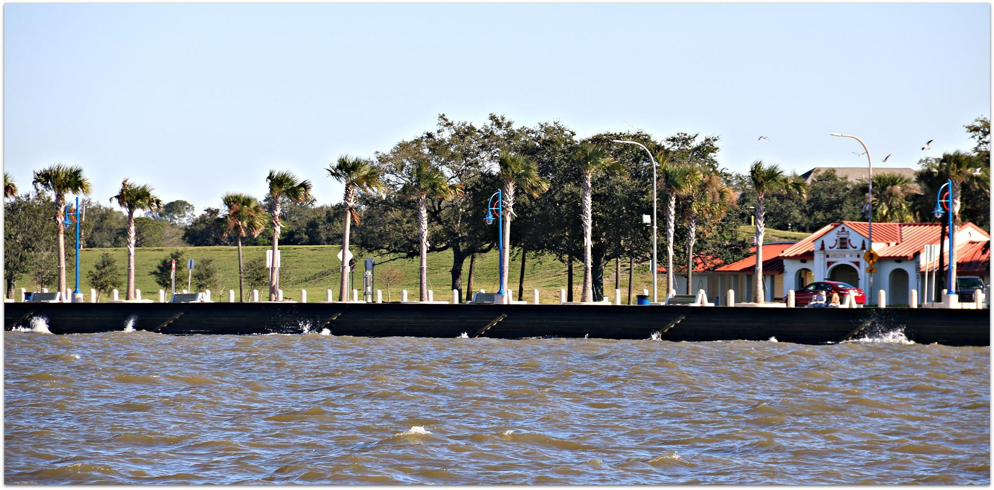 LakefrontSeaWallandPalms.jpg