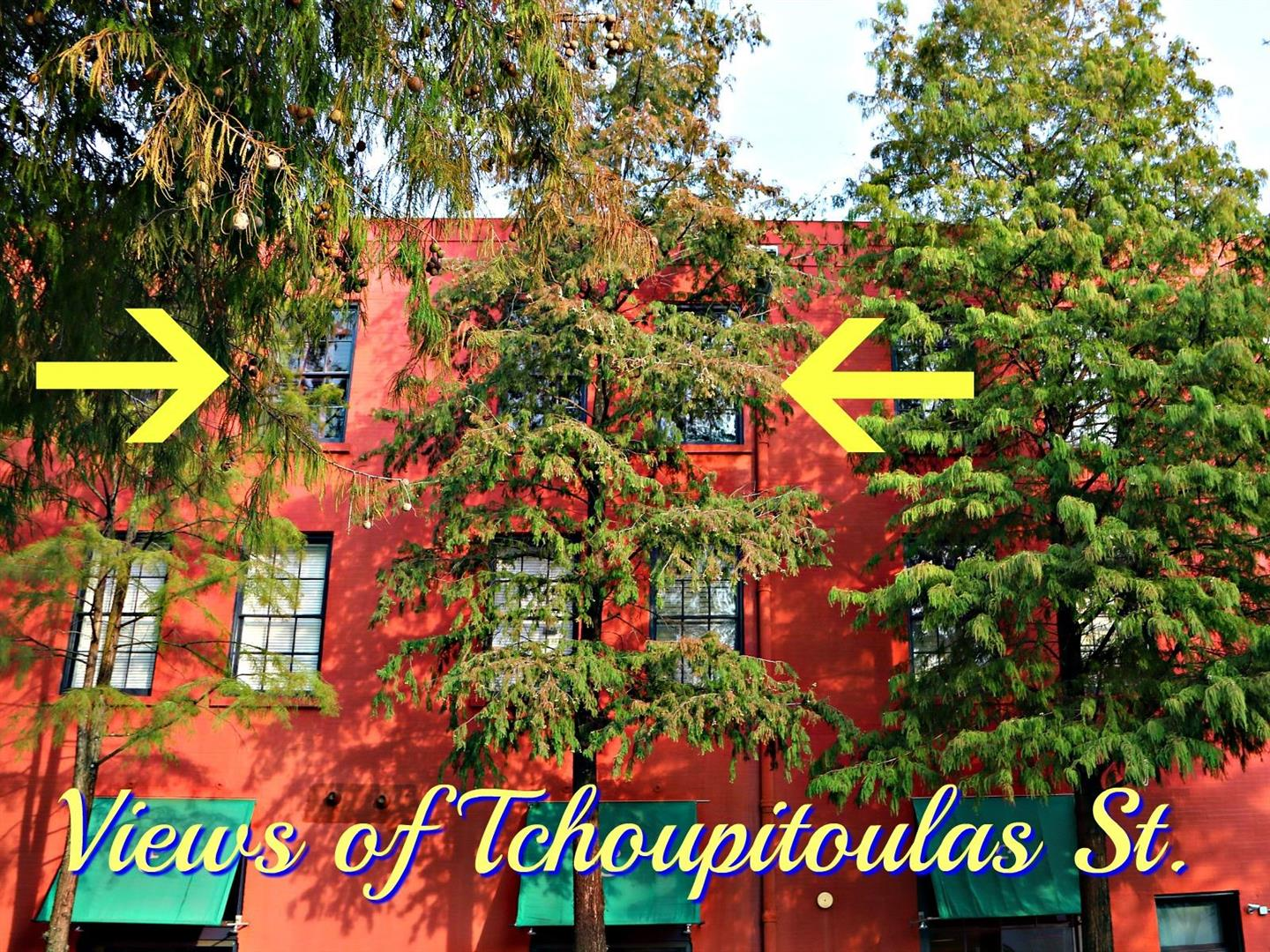 330JuliaStreet309Windows.jpg