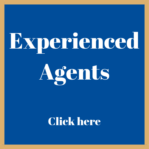 experienced_agent_here.png