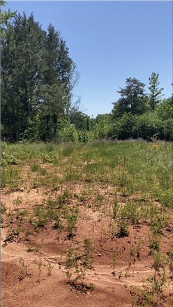 Lot In Centreville